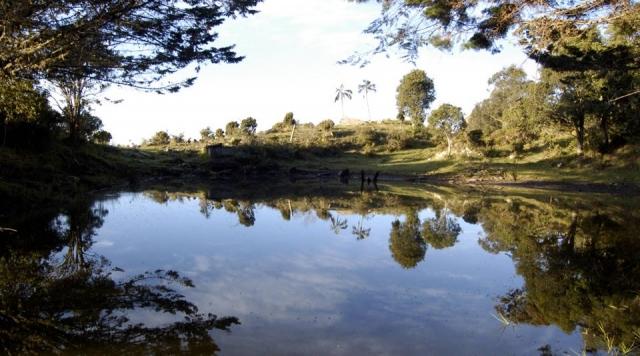 Reservas de la Biosfera en Colombia, dónde están y cuáles son