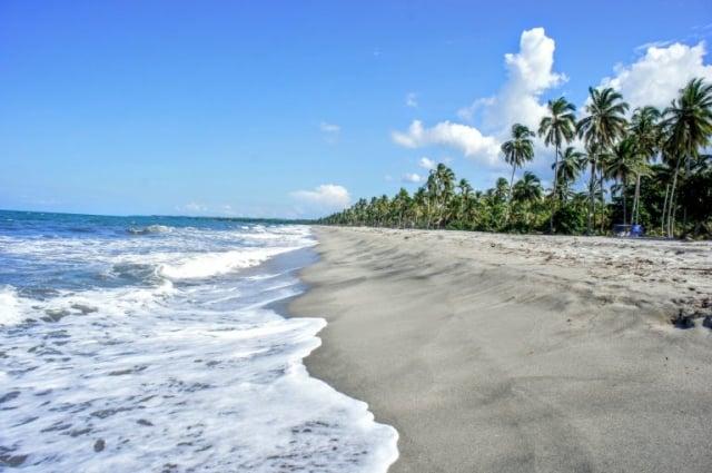 Cómo llegar a Palomino desde Santa Marta. Guía con presupuesto y planes