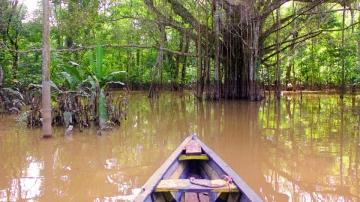 Consejos para viajar al Amazonas colombiano. Todo lo que tienes que saber