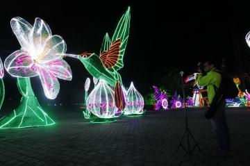Los alumbrados navideños más bonitos de Colombia
