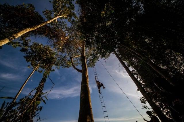 Experiencias únicas que tienes que vivir en el Amazonas colombiano