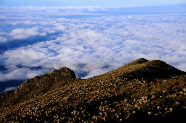 Cómo llegar al Páramo del Sol, el lugar más alto de Antioquia