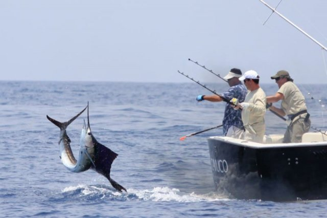 Regulation and closure for sport fishing in Colombia