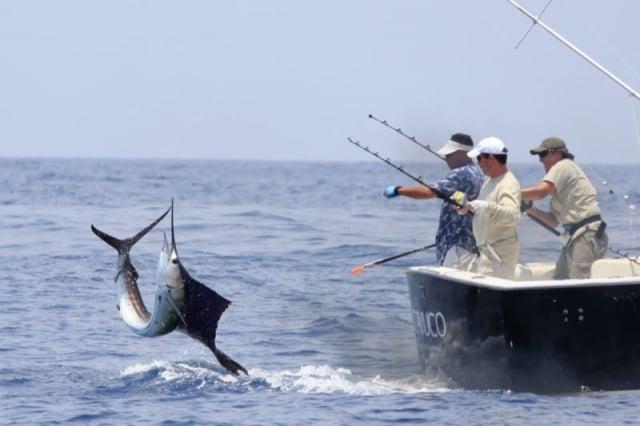 Réglementation et fermeture de la pêche sportive en Colombie