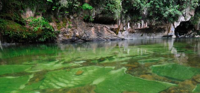 Cómo llegar a Río Claro. Conoce la selva entre Bogotá y Medellín