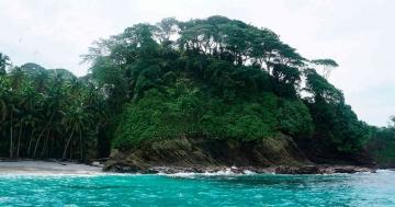 Cómo llegar a Isla Gorgona y qué hacer en este parque natural