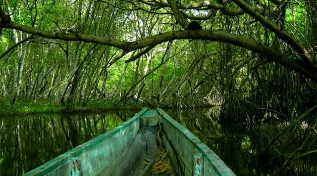 Raisons pour visiter le parc national naturel d'Isla de Salamanca