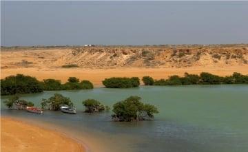 Guía visitar Bahía Honda en La Guajira ¿Cómo llegar y qué hacer?
