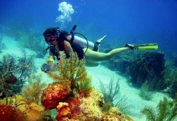 Los mejores lugares para hacer buceo en Santa Marta