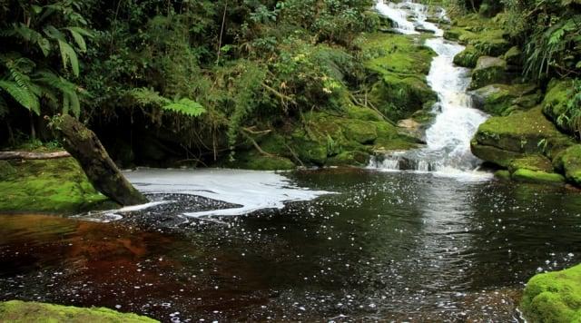 Parchi naturali nazionali della Colombia.