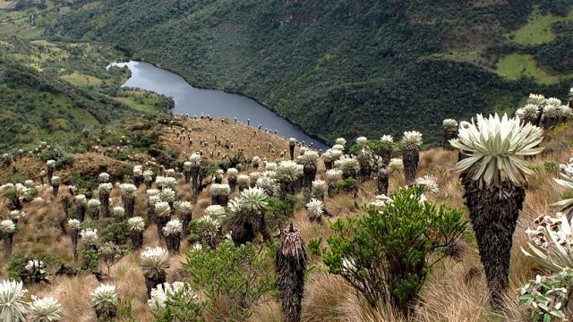 Cómo llegar al increíble Páramo de Ocetá en Boyacá