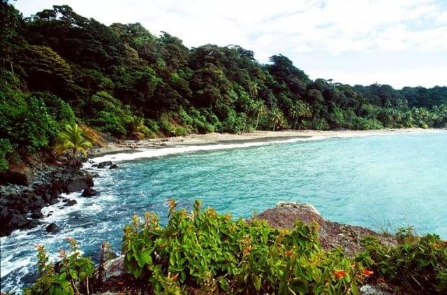 Isla Gorgona Cauca