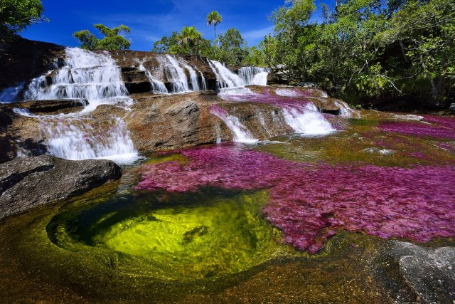 Photography in Colombia - Caño Cristales