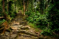 Best trekking routes in Colombia to do this 2021