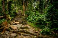 Mejores rutas de trekking en Colombia para hacer este 2021