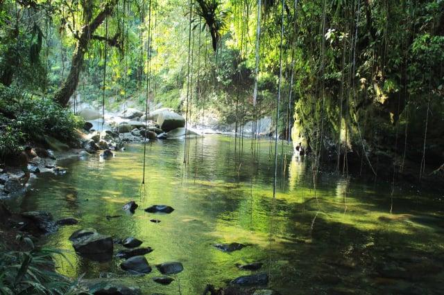 Descubre el Río Melcocho, el más transparente de Colombia y cómo llegar