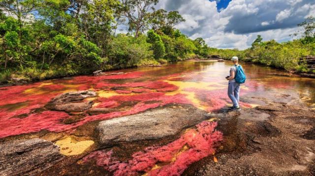 turismo ecológico en Colombia - Caño Cristales