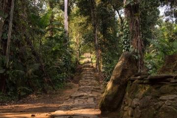 Trek de la Cité Perdue en Colombie pour 4 jours