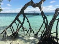 Visite de l'île de Múcura et de l'archipel de San Bernardo
