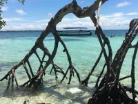 Tour all'isola di Múcura e all'arcipelago di San Bernardo