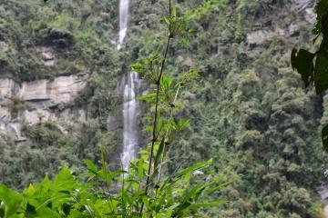 Tour a La Chorrera da Bogotá