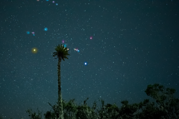 Tour al Parque Chingaza de noche